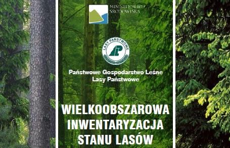 Grafika z lasem, logotypem Lasów Państwowych oraz napisem Wielkoobszarowa Inwentaryzacja Stanu Lasów